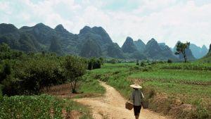 Bonde i Kina