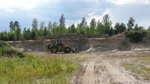 Sandtäkt och traktor. En sandbank där backsvalors bon ska ha förstörts-