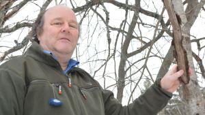Naturväktaren, forskaren Anders Albrecht säger att naturen klarar bra den sena våren.