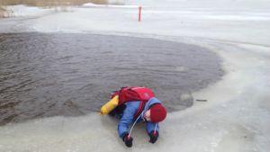 Yle nyheters reporter Sara Ekstrand drar sig upp ur en vak med hjälp av isdubbar.