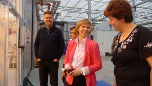 Stefan Skullbacka, Ulla-Maj Wideroos, Anna-Maja Henriksson på besök i Johanna Smiths växthus.