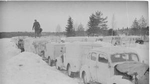 Röda korsets bilar under Vinterkriget.