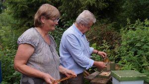 Marianne och Sven-Olof ohlsson har ungefär 200 bisamhällen utplacerade i skogsområden. Här på gården i Munsala finns parningslådor där nya bisamhällen drivs upp.