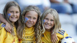 Svenska fans vid EM 2013.