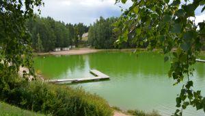 blågröna alger i pepotgropen i borgå