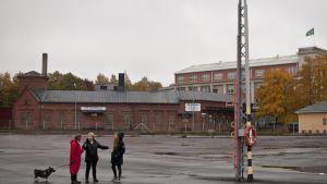 Styrelsen för föreningen Norra hamnen på hamnplanen i Ekenäs, från vänster viceordförand Gustav Hafrén, ordföranden Ylva Rancken-Lutz och kommunikatör Fia Doepel.