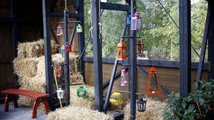 Installation med lyktor och halm i växthuset.