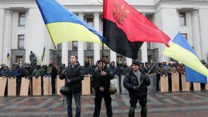 Demonstranter utanför parlamentet i Kiev.
