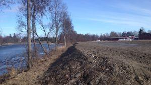 En odlingsbar vall vid Lappfjärds å.