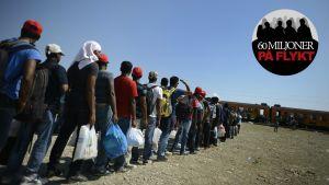Flyktingar väntar vid en tågstation i Makedonien för att kunna ta sig vidare till Serbien.