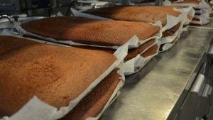 Kakbottnar till 25-meter lång tårta för att fira Konstens natt i Vasa 2016