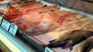 fiskar i fiskdisk