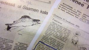 Kuva kahdesta sanomalehtikirjoituksesta  jotka käsittelivät vesipiirirajankäyntiä 1970-luvulla