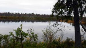 Jokimaisema Sodankylältä