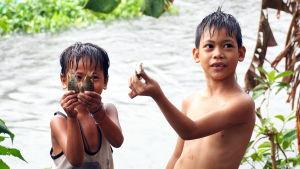 Barnen fiskar i Caloocan City