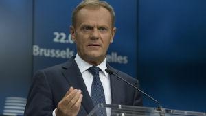 Europeiska rådets ordförande Donald Tusk ser allvarlig ut bakom en mikrofon.