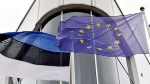 Estlands och EU:s flaggor vajar i vinden i Tallinn den 30 juni 2017.