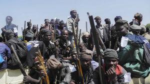 Nigerianer påväg för att slåss mot islamistgruppen Boko Haram