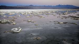 Atemaca Salar, litiumreservoar i Chile