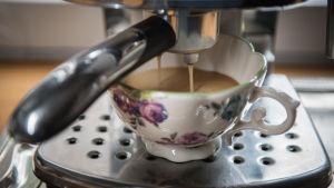 kahvi cappucino