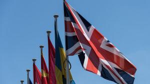 Den brittiska flaggan tillsammans med flaggor från Eu-länder.