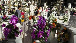 Gravgård smyckad med blommor i Malaga i Spanien