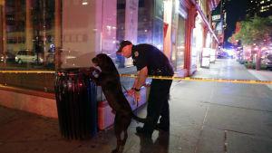 Polisen letar efter explosiva ämnen på Manhattan