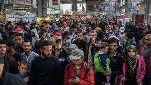 Flyktingar från Syrien och Afghanistan anländer till Tyskland