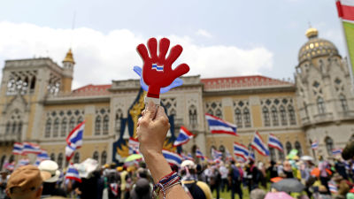 Aktivister storde val i thailand