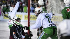 Veiteräs Tuukka Loikkanen firar mål i bandyfinalen 2017.