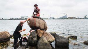 Skulpturen Den lille havfrue i Köpenhamn rengörs.