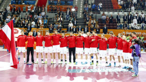 Österrikes handbollslandslag inför VM-mötet med Qatar.