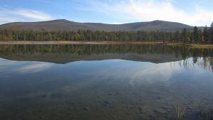 Träsklandskap i Urho Kekkonens nationalpark.