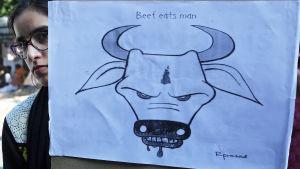 Indien försöker förbjuda nötkött