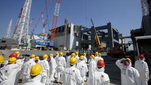 Kärnkraftverket i Fukushima.