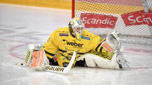Jussi Markkanen är en finsk hockeymålvakt.