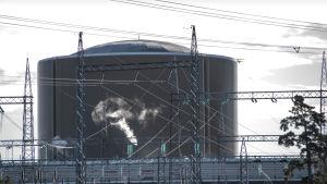 Kärnreaktor i Lovisa kärnkraftverk