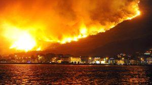 En skogsbrand härjar nära orten Podstrana i Kroatien.