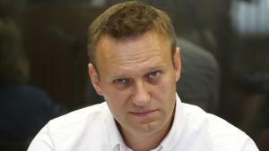Den ryske oppositionsledaren Aleksej Navalnyj inför domstol i Moskva 1.8.2016
