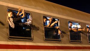 Flyktingar på tåg mot Ungern vid gränsen mellan Kroatien och Serbien.
