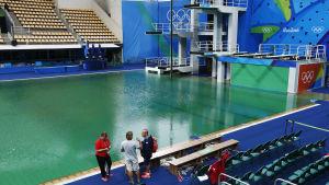 Grönt vatten i en simhoppsbassäng i OS.