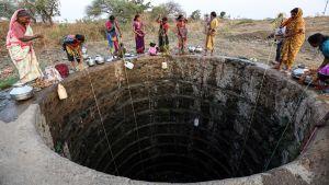 Bybor samlar vatten från en nästan uttorkad brunn i byn Rasegaon i Indien