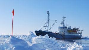 Norska forskningsfartyget Lance.
