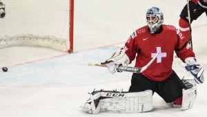 Ishockeymålvakt släpper in ett mål.