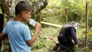 En pojke tittar på när en soldat röjer minor i byn El Orejon, Colombia, i november 2015.