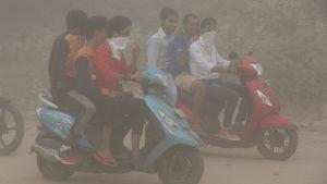 Smog i Delhi