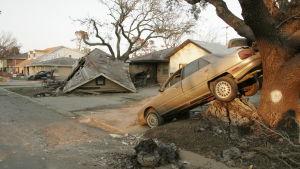Förödelse i en förort till New Orleans efter orkanen Katrina.