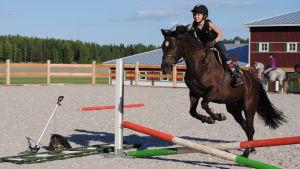 Miranda Panula på en hästrygg på en hoppbana.