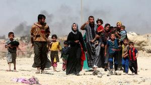 Största delen av de nästan 900 000 människor som har flytt från Mosul är kvinnor och barn