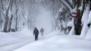 Det kan snöa mycket i Turkiet. Den här bilden är från Istanbul januari 2017.